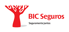 BICSeguros_horz_positivo-1