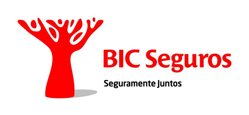 BICSeguros_horz_positivo